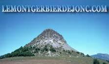 logo_mtgerbier